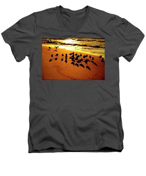 Bird Shadows Men's V-Neck T-Shirt