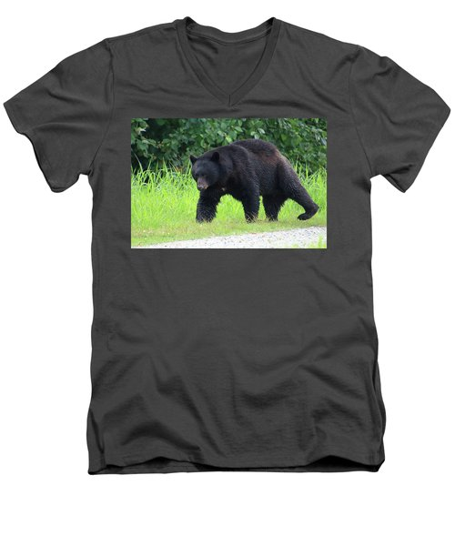 Black Bear Crossing Men's V-Neck T-Shirt
