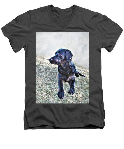 Black Labrador Retriever - Daisy Men's V-Neck T-Shirt