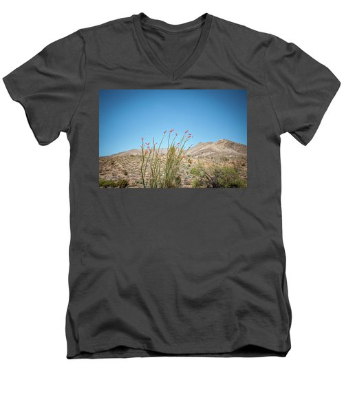 Blooming Ocotillo Men's V-Neck T-Shirt