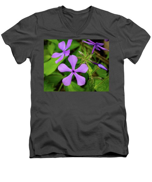 Blue Phlox Men's V-Neck T-Shirt