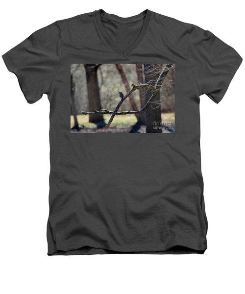 Bluebird, Bluebird, Sing To Me Men's V-Neck T-Shirt