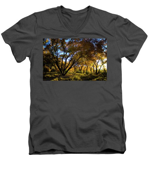 Bosque Color Men's V-Neck T-Shirt