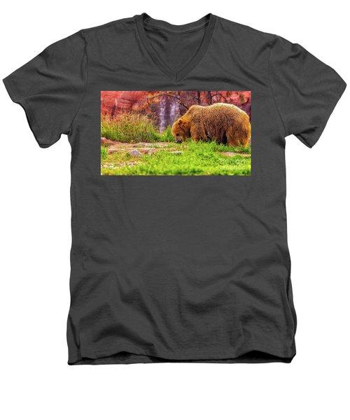 Brisk Walk Men's V-Neck T-Shirt