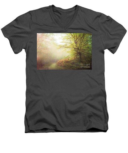 Broceliand Path Men's V-Neck T-Shirt
