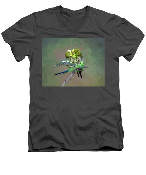 Budgie Love Men's V-Neck T-Shirt