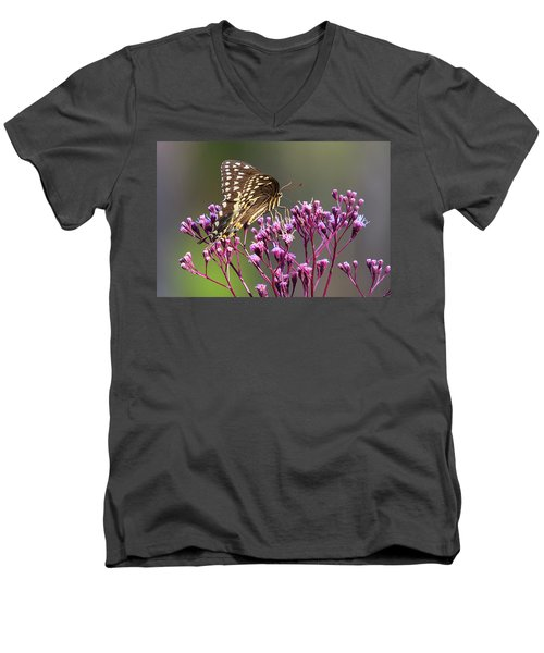 Butterfly On Wild Flowers Men's V-Neck T-Shirt