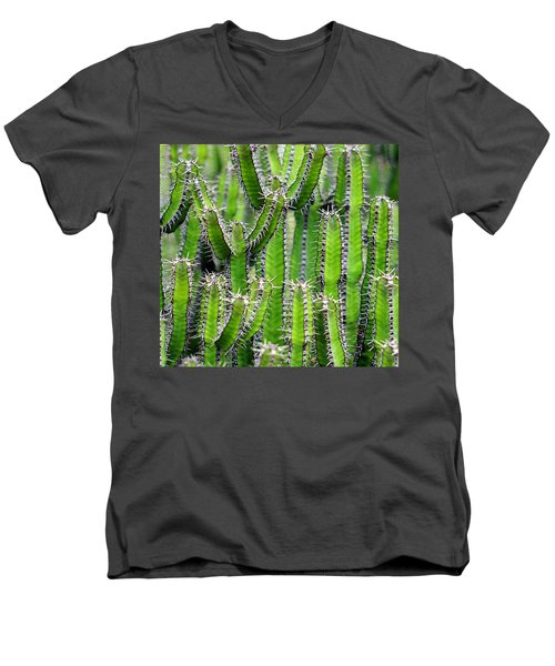 Cacti Wall Men's V-Neck T-Shirt