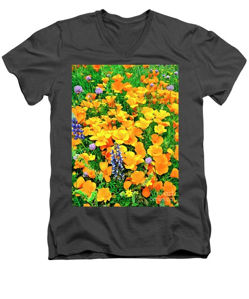 California Poppies And Betham Lupines Southern California Men's V-Neck T-Shirt