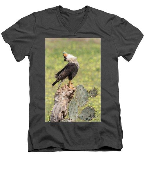 Caracara Head Throw Men's V-Neck T-Shirt