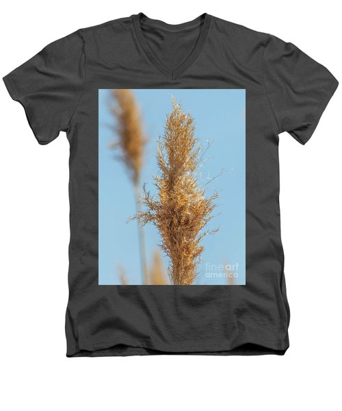 Cattail  Men's V-Neck T-Shirt