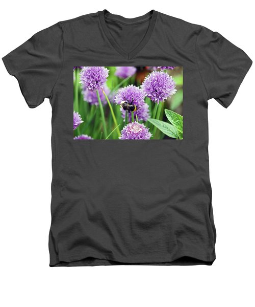 Chorley. Picnic In The Park. Bee In The Chives. Men's V-Neck T-Shirt