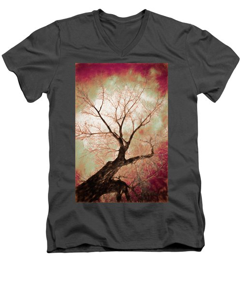 Men's V-Neck T-Shirt featuring the photograph Climbing Red Fiery by James BO Insogna