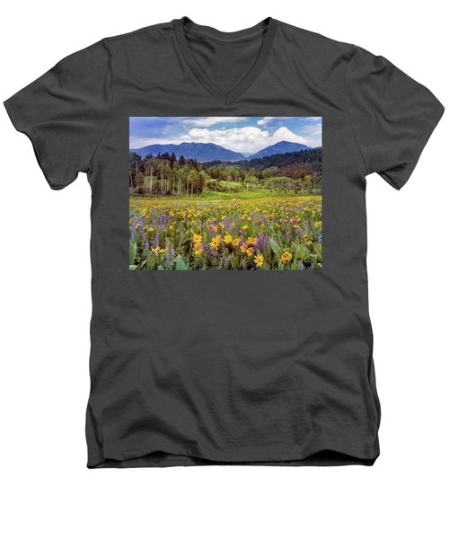 Color Of Spring Men's V-Neck T-Shirt