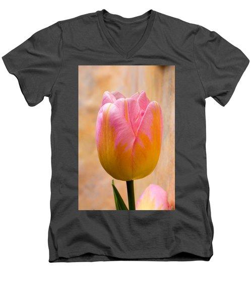 Colorful Tulip Men's V-Neck T-Shirt