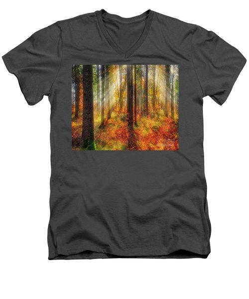 Colours Of Nature 02 Men's V-Neck T-Shirt