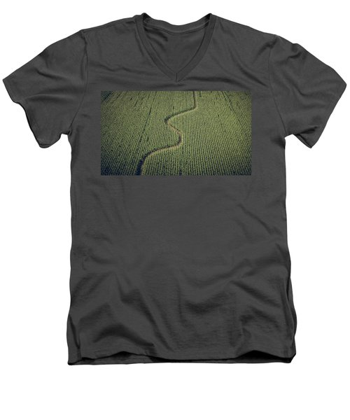 Corn Field Men's V-Neck T-Shirt