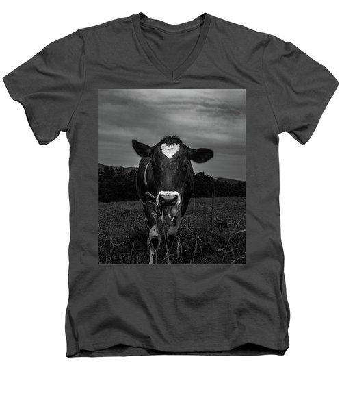 Cow Men's V-Neck T-Shirt