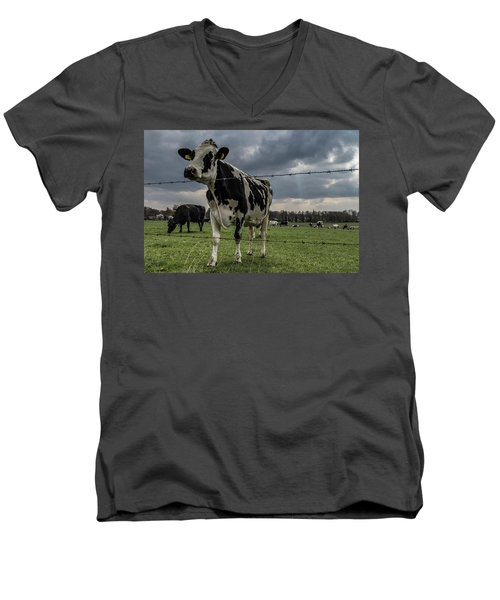 Men's V-Neck T-Shirt featuring the photograph Cows Landscape. by Anjo Ten Kate