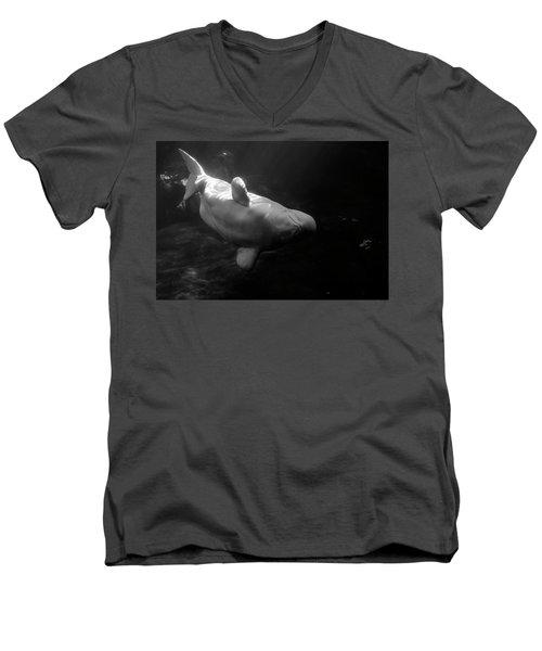 Curious Beluga Men's V-Neck T-Shirt
