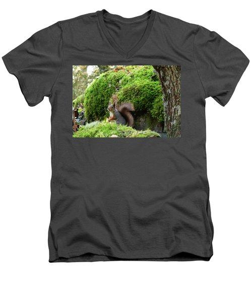 Curious Squirrel Men's V-Neck T-Shirt