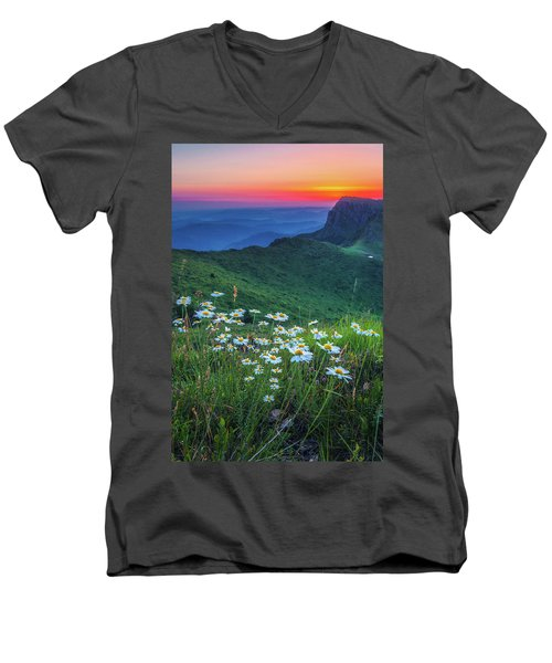 Daisies In The Mountain Men's V-Neck T-Shirt