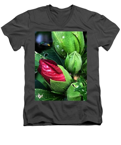 Dalton Men's V-Neck T-Shirt