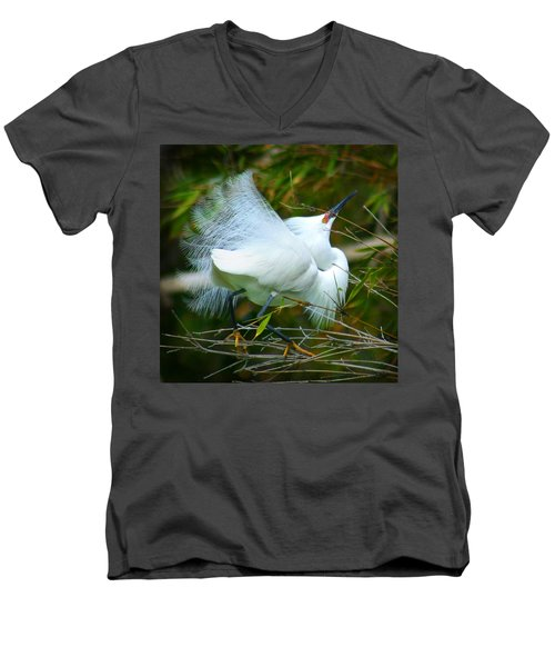 Dancing Egret Men's V-Neck T-Shirt