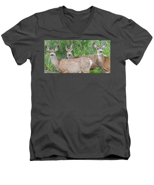 Men's V-Neck T-Shirt featuring the photograph Danger Lurks by Tim Kathka