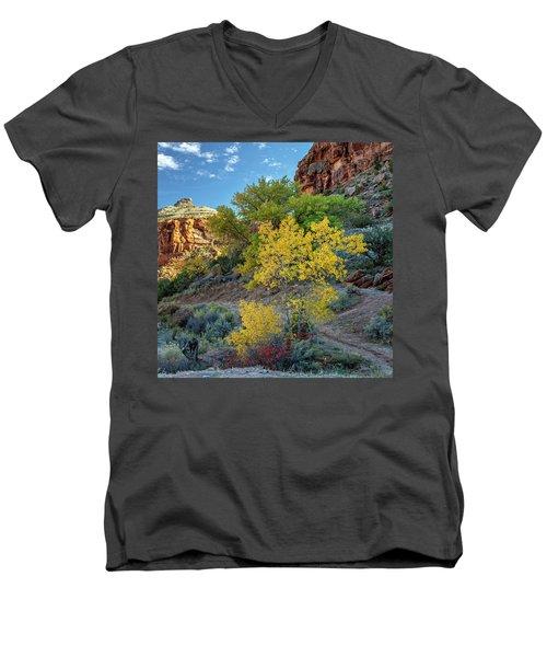 Dominguez Gold Men's V-Neck T-Shirt