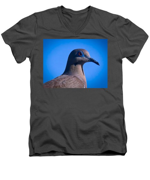 Don't It Make My Brown Eyes Blue Men's V-Neck T-Shirt