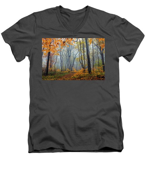 Dream Forest Men's V-Neck T-Shirt