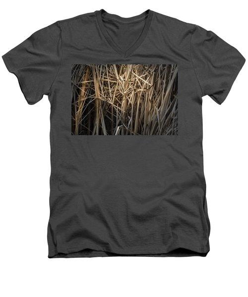 Dried Wild Grass II Men's V-Neck T-Shirt