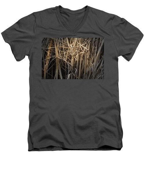 Dried Wild Grass II Men's V-Neck T-Shirt