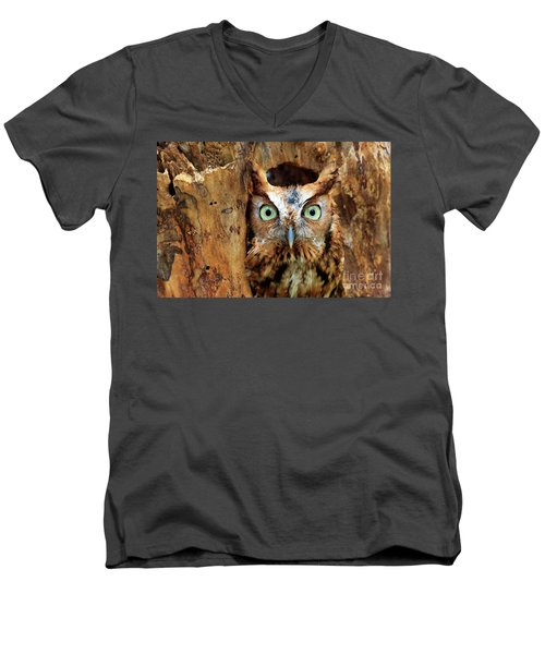Eastern Screech Owl Perched In A Hole In A Tree Men's V-Neck T-Shirt