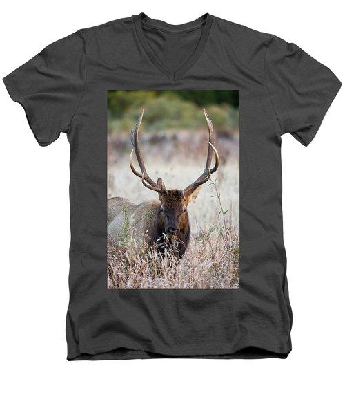 Elk Portrait Men's V-Neck T-Shirt