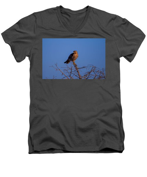 Evening Look Out Men's V-Neck T-Shirt