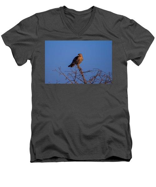 Evening Look Out Men's V-Neck T-Shirt
