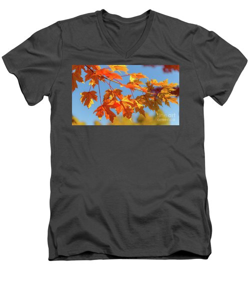 Fall Foliage Men's V-Neck T-Shirt