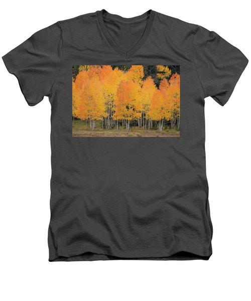 Fall Has Arrived Men's V-Neck T-Shirt