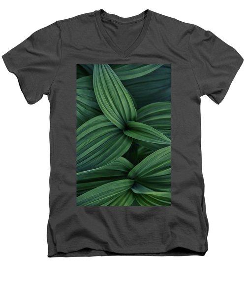 False Hellebore Plant Abstract Men's V-Neck T-Shirt