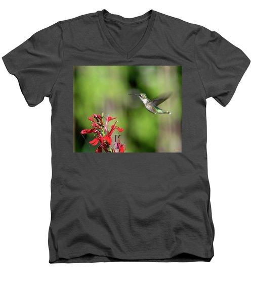 Female Ruby-throated Hummingbird Dsb0320 Men's V-Neck T-Shirt