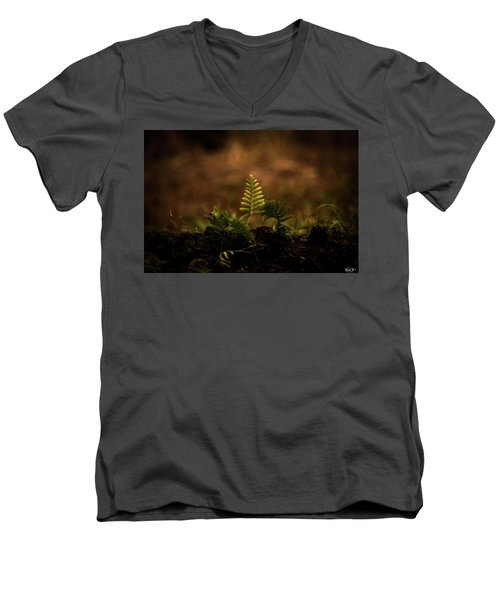 Fern Of Life Men's V-Neck T-Shirt