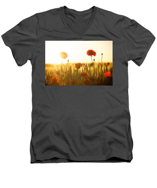 Field Of Poppies At Dawn Men's V-Neck T-Shirt
