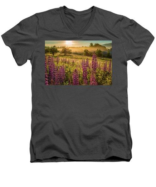 Fields Of Lupine Men's V-Neck T-Shirt