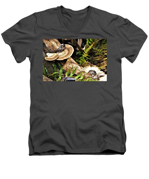 Florida Forest Men's V-Neck T-Shirt