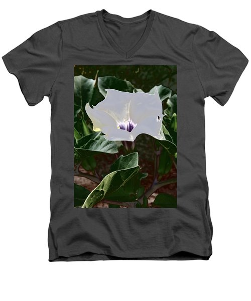 Men's V-Neck T-Shirt featuring the photograph Flower And Fly by Judy Kennedy