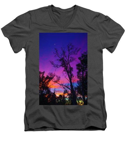 Forest Colors Men's V-Neck T-Shirt