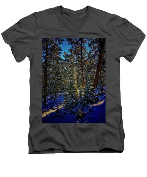 Men's V-Neck T-Shirt featuring the photograph Forest Shadows by Dan Miller