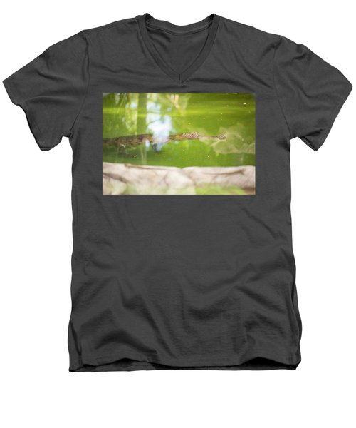 Freshwater Crocodile Men's V-Neck T-Shirt